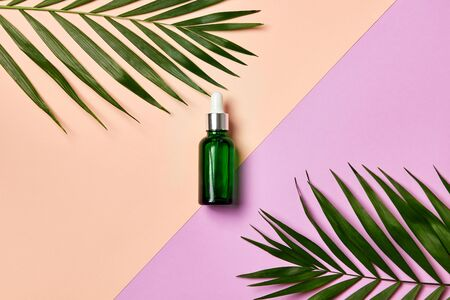 Green dropper bottle with facial essential oil or serum on light purple and beige background with leaves. Natural cosmetic, beauty care or aromatherapy concept.
