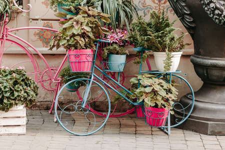 Decorative vintage model bicycle equipped flowers on street