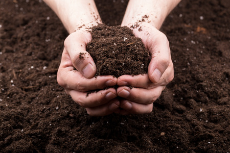 Bunch of good soil in hands on ground background
