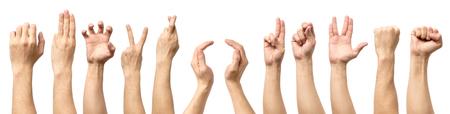 Múltiples gestos masculinos de la mano caucásica aislado sobre el fondo blanco, conjunto de imágenes múltiples