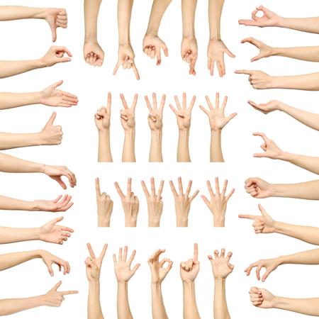 Gestos de mano de la mujer múltiple aislados en blanco. Gran conjunto de imágenes múltiples Foto de archivo - 88198197