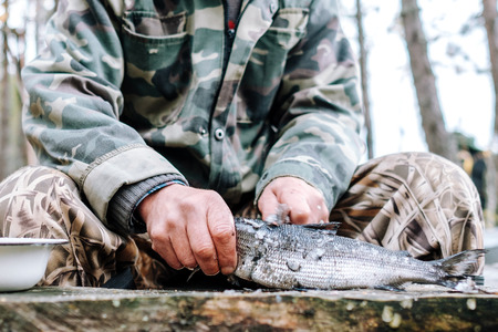 Fisherman cleaning fish by knife on wooden board outdoors