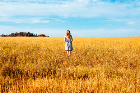 Portrait of a beautiful young woman in a dress walking through the wheat field Stock Photo