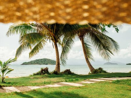 View on palm and tropical beach from straw hat