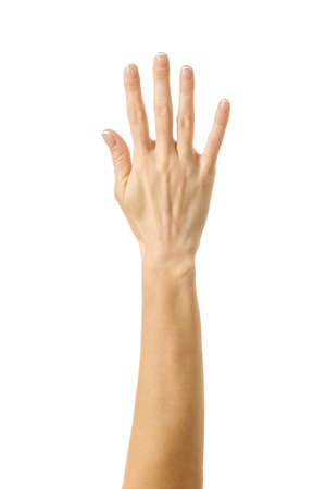 Raised hand voting or reaching. Woman hand with french manicure gesturing isolated on white background. Part of series 写真素材