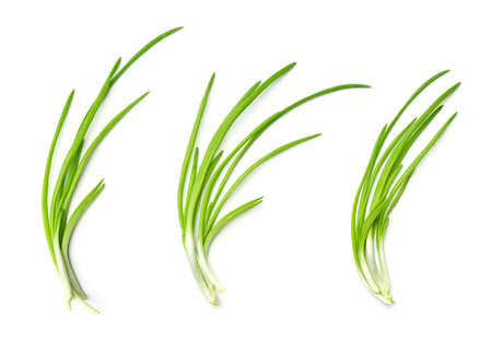 Collection of young green onion isolated on white background. Set of multiple images. Part of series 写真素材