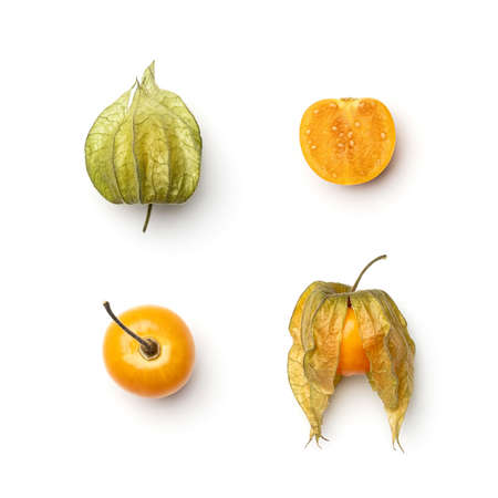 Collection of physalis berries isolated on white background. Set of multiple images. Part of series