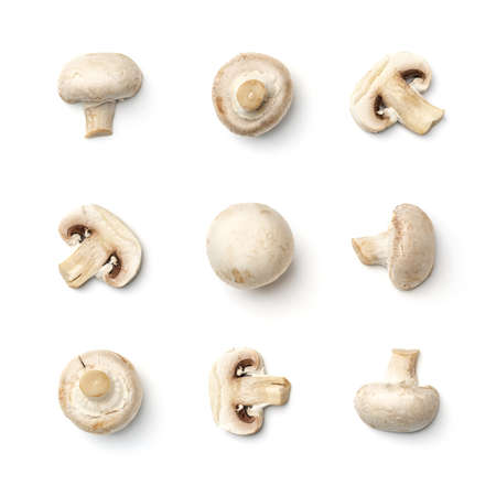 Collection of champignons isolated on white background. Set of multiple images. Part of series