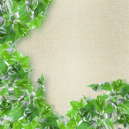 Green leaves border over textured background photo