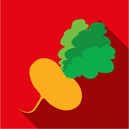 vegatables: Radish icon flat. Modern colored icons in a flat design with long shadow.