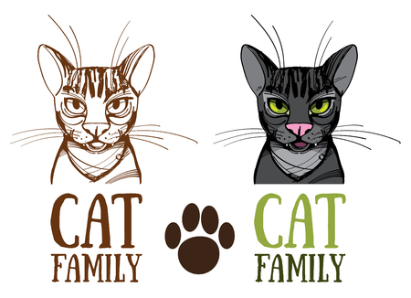 A Cat family, Vector illustration isolated on white background. Illustration