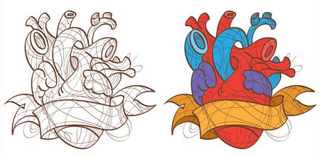 Vector illustration of the human heart, tattoo.
