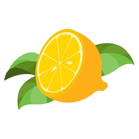 Half of lemon logo. Half of lemon logo. Color illustration of citrus. 일러스트