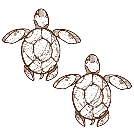 Sea turtles. Clipart on the marine theme. Animal protection