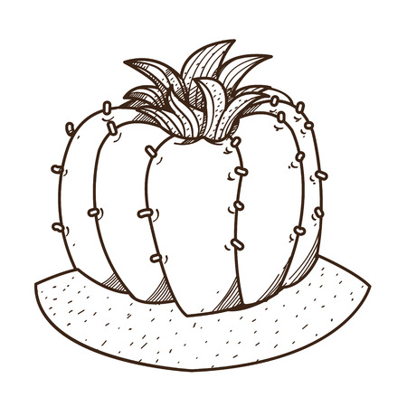Blooming cactus outline drawing for coloring, plants logo.