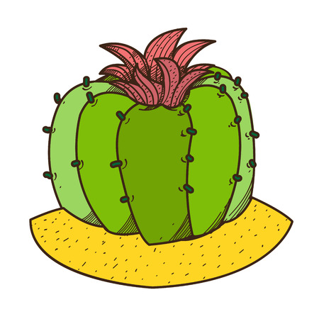Blooming cactus colored illustration, plants logo on a white background.