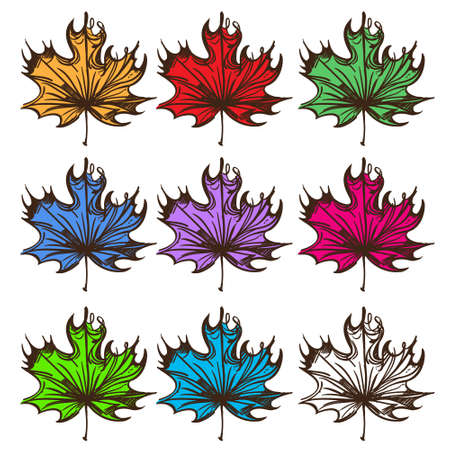 Big set of multi-colored maple leaves. Labels for design autumn party and various items 矢量图像