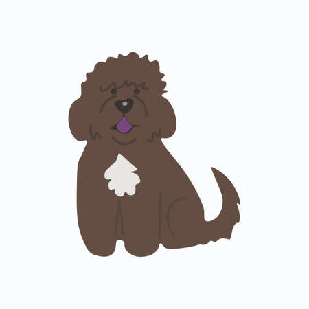 Barbet French water dog icon. Dog icon. Illustration