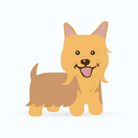 Silky Terrier. Dog icon. Vector illustration.
