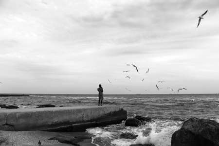 dock: Girl standing on the dock surrounded by seagulls Stock Photo