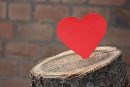 log: Paper heart hearts lying on a log Stock Photo