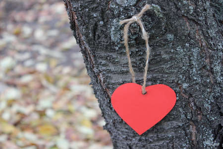 tree linked: Red paper hearts hanging on a tree Stock Photo