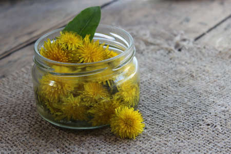 tincture: Yellow dandelion flower in a glass jar with water nafone boards and Llano tissue. Tincture Stock Photo