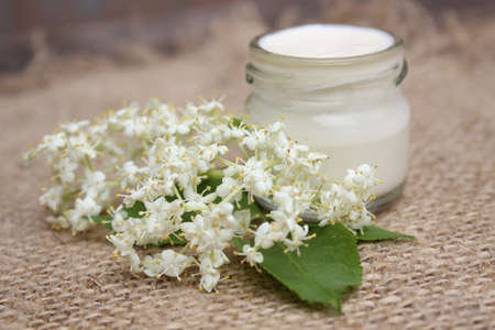 liniment: Face cream in a glass jar with chestnut flowers on a background of burlap.Cosmetics. Stock Photo