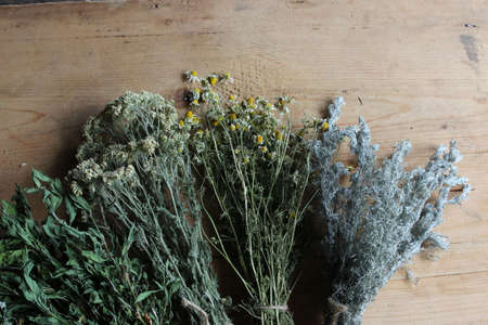 plantain herb: Binding of different dry herbs on wooden boards. Stock Photo