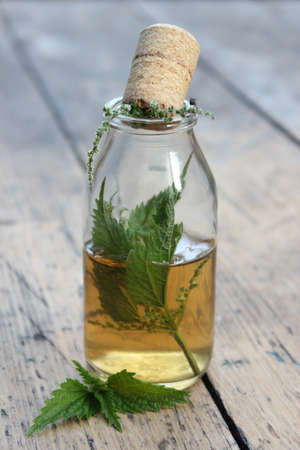 elixir: Jar with alcohol tincture and nettle leaves on a background of boards.