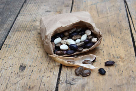 large bean: Large multi-colored bean in paper bag on background of boards