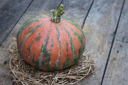 Round ripe pumpkin pumpkin on wooden board Stock Photo