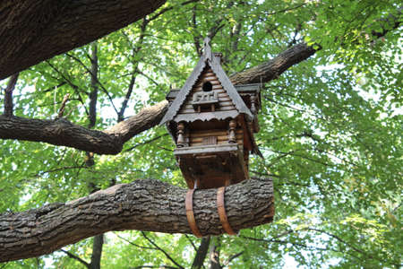 chick: Wooden carved birdhouse on a tree in the park Stock Photo