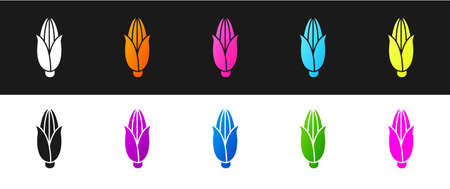 Set Corn icon isolated on black and white background. Vector Illustration