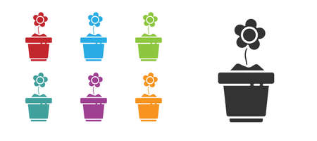 Black Flower in pot icon isolated on white background. Plant growing in a pot. Potted plant sign. Set icons colorful. Vector Illustration.