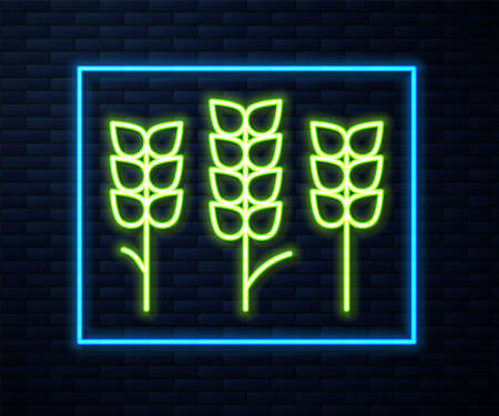 Glowing neon line Cereals set with rice, wheat, corn, oats, rye, barley icon isolated on brick wall background. Ears of wheat bread symbols. Vector Illusztráció