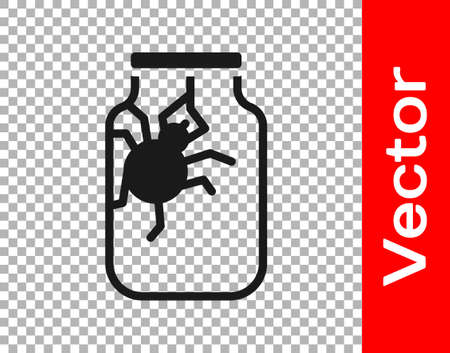 Black Spider in jar icon isolated on transparent background. Happy Halloween party. Vector.