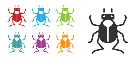 Black Beetle bug icon isolated on white background. Set icons colorful. Vector.