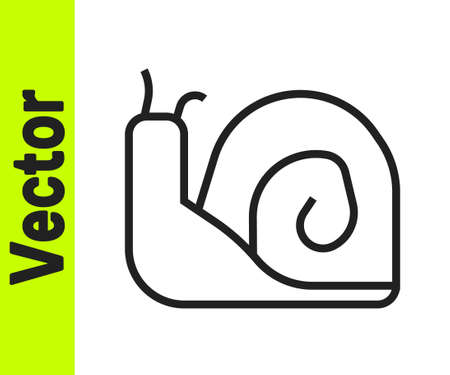 Black line Snail icon isolated on white background. Vector. 矢量图像