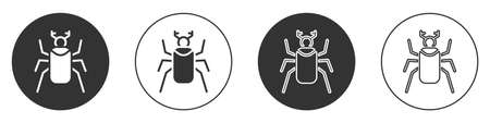 Black Beetle bug icon isolated on white background. Circle button. Vector
