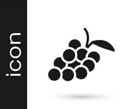 Black Grape fruit icon isolated on white background. Vector