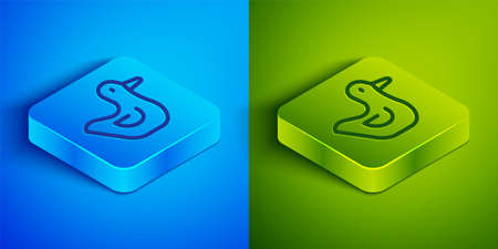 Isometric line Rubber duck icon isolated on blue and green background. Square button. Vector