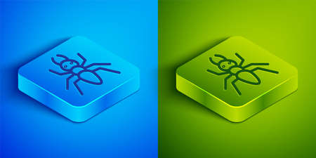 Isometric line Ant icon isolated on blue and green background. Square button. Vector