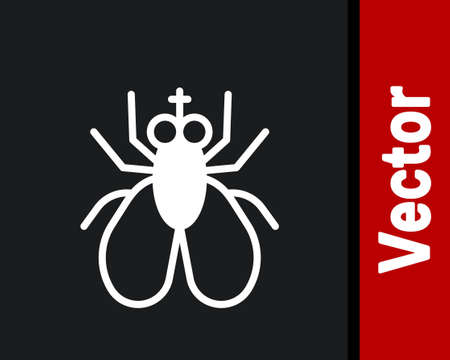 White Insect fly icon isolated on black background. Vector