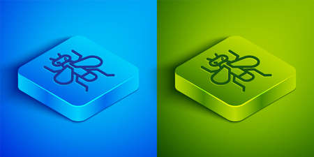 Isometric line Insect fly icon isolated on blue and green background. Square button. Vector