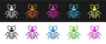 Set Chafer beetle icon isolated on black and white background. Vector