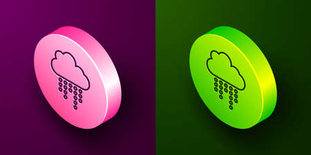 Isometric line Cloud with rain icon isolated on purple and green background. Rain cloud precipitation with rain drops. Circle button. Vector