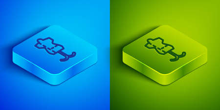 Isometric line Mannequin icon isolated on blue and green background. Tailor dummy. Square button. Vector