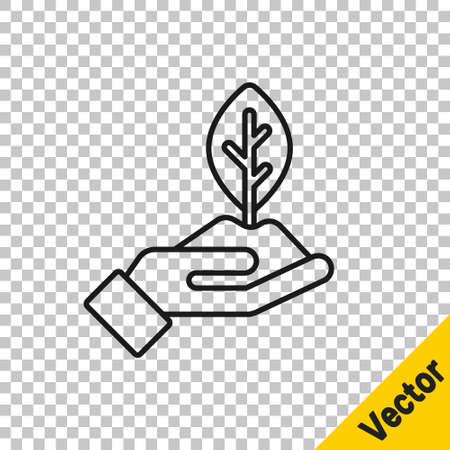 Black line Plant in hand of environmental protection icon isolated on transparent background. Seed and seedling. Planting sapling. Ecology concept. Vector