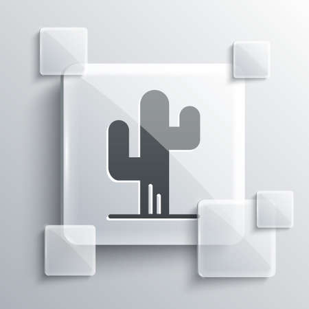 Grey Cactus icon isolated on grey background. Square glass panels. Vector